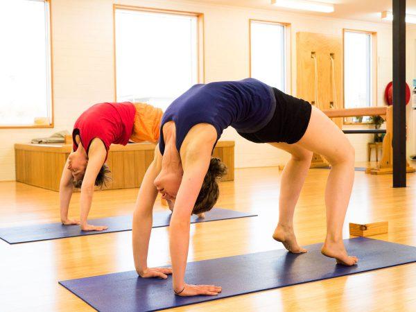 hatha iyengar yoga poses